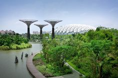 A Singapore Weekend Itinerary: enjoy Singapore's iconic attractions, such as Universal Studios, and see landmark sights, such as Gardens by the Bay Hydroponic Gardening, Hydroponics, Organic Gardening, Singapore Garden, Gardens By The Bay, Modern Spaces, Universal Studios, Marina Bay Sands, Places To Go
