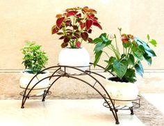 suportes para plantas - Pesquisa Google