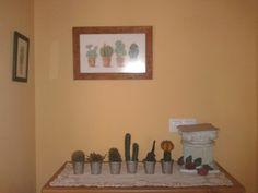 reco dels cactus