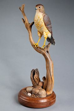 First Place and Wood Carving/Sculpture Class 02 Animals 2012 ...