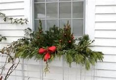 Image Search Results for christmas window boxes ideas