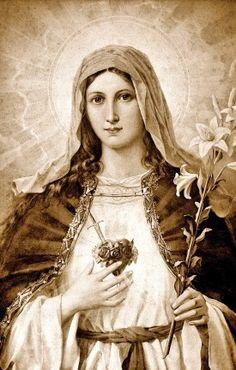 Dulce Corazón de María - gloria.tv ~Preciosa imagen francesa del Inmaculado Corazón. Archivo en alta resolución.