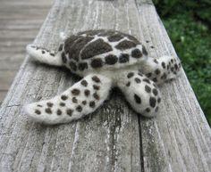 Sea turtle again