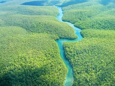 Shared Round-Trip Transfer: Iquitos Airport to Hotels in Peru South America Forest Ecosystem, Amazon River, Nile River, Amazon Rainforest, Brazil Rainforest, Plantation, Rio Grande, Aerial View, Ecuador