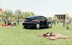 young & light 2013 beetle