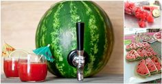 How To Make A Watermelon Keg And 10 Other Delicious Watermelon Recipes | Diply