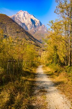 Viale Autunnale [Pathway in autumn] (Lombardy, Italy) by Marco Delvecchio cr. Cool Landscapes, Beautiful Landscapes, Landscape Design Plans, Country Landscaping, Country Scenes, Back Road, Beautiful Places In The World, Roadtrip, Science And Nature