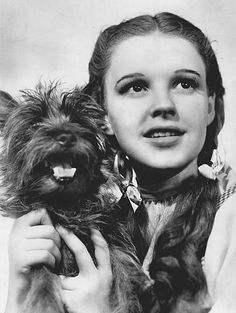 """Photo: publicity photo of Judy Garland as Dorothy Gale and American canine performer Terry as Toto in """"The Wizard of Oz."""" Credit: NBC Television Network; Wikimedia Commons. Read more on the GenealogyBank blog: """"'The Wizard of Oz' Premieres."""" https://blog.genealogybank.com/the-wizard-of-oz-premieres.html"""