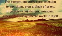 the moment one gives close attention to any thing, even a blade of grass, it becomes a mysterious, awesome, Indescribably magnificent, world in itself.