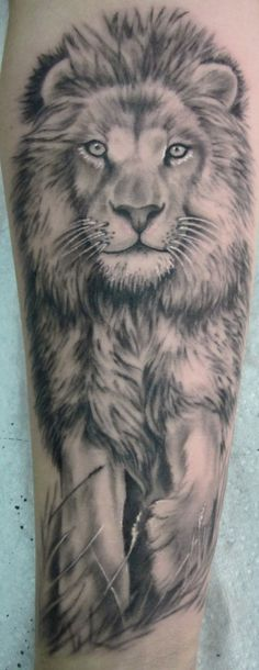 Realistic Lion Tattoo On Forearm