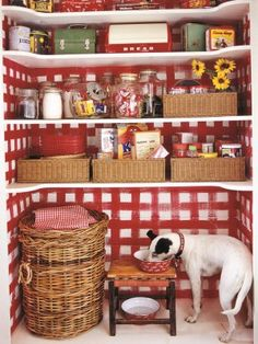 vignette design: Red and White Checks. I like this fun pattern in the pantry. Red Kitchen, Vintage Kitchen, Kitchen Ideas, Pantry Ideas, Kitchen Pantry, Kitchen Storage, Vignette Design, Red Cottage, Cottage Style