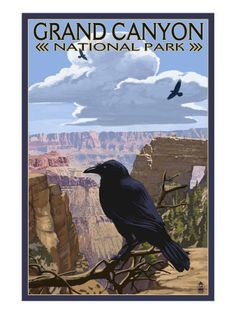 Grand Canyon National Park - Ravens and Angels Window Premium Poster $19.99