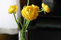 floral arrangement / flower bouquet / flower http://www.redbubble.com/people/chantalc/works/8442168-heart-of-a-tulip-macro-shot-of-stamen-and-pistil-yellow-orange-flower-outdoors-flora-photography