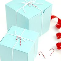 Candy Cane Gift Wrap Accessories