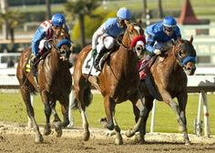 Kentucky Derby: O'Neill hoping to join elite list of repeaters | Daily Racing Form