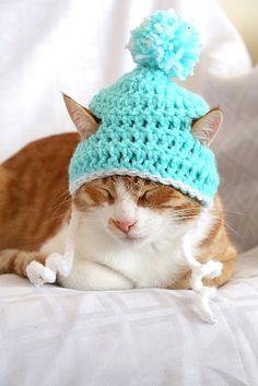 Crochet Cat Hat pattern - easy crochet cat-hat pattern for beginners Crochet Video, Easy Crochet, Free Crochet, Crochet Dog Hat Free Pattern, Funny Crochet, Chat Crochet, Ravelry Crochet, Crochet Granny, Beanie Pattern