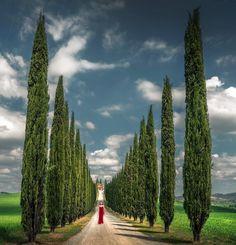 Tuscany (Italy) by İlhan Eroğlu (@ilhan1077) on Instagram