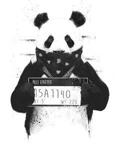 Bad Panda Mini Art Print by Balazs Solti - Without Stand - x Panda Wallpapers, Panda Art, Bored Panda, Cute Stickers, Framed Art Prints, Framed Artwork, Canvas Wall Art, Big Canvas, Fine Art America