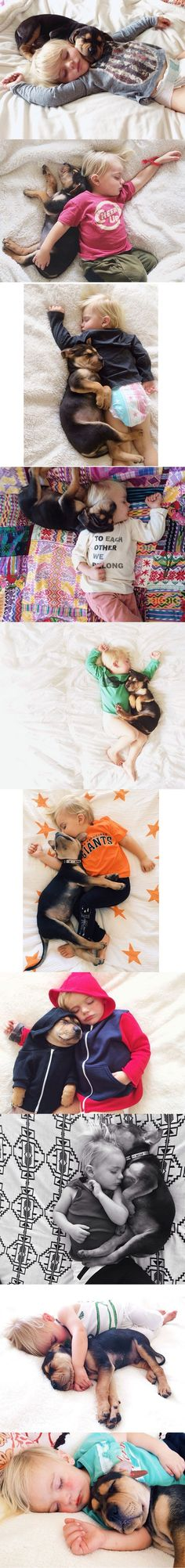Theo and Beau - A napping toddler and his dog...