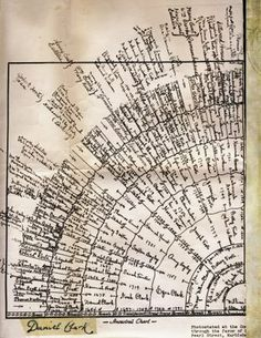 This fan chart was sent to my dad by his Aunt Opal. It seems to be pretty accurate. Everything I have checked by looking in genealogy book. Genealogy Humor, Genealogy Chart, Family Genealogy, Family Tree Format, Family Tree Art, Cousin Family, Cousins, Lds Object Lessons, Family Research