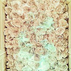 Paper Flower Wall.JPG