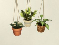 Mod The Sims: Modular Hanging Plants by plasticbox • Sims 4 Downloads