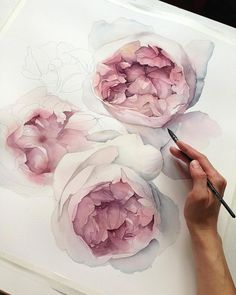 В процессе 🌸 watercolour tutorials, watercolor techniques, watercolor flow Peony Drawing, Peony Painting, Drawing Artist, Watercolour Painting, Drawing Flowers, Watercolors, Painting Art, Watercolor Rose, Watercolor Illustration