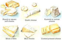 French etiquette - the right way to cut cheese by type