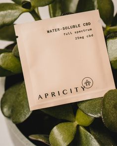 We helped Apricity design their brand through a comprehensive set of branding guidelines and a range of packaging designs including CBD tinctures, lotions, and water-soluble packets. #businessbranding #design #branddesign