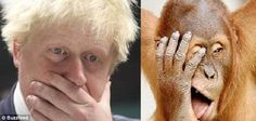 Exasperated: The hairy pair look like they've had enough as they clap a hand to their faces
