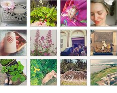 Lovely Greens | DIY Projects, Handmade Beauty, Edible Gardening, and Life on the Isle of Man