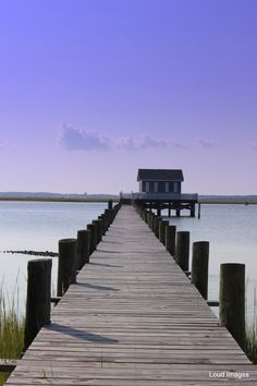 Chincoteague, Virginia  By: Loud Images Photography