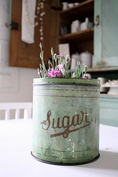 ~ flowers in a sugar canister