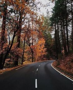 Image about nature in autumn 🍁🍁🍂 by Zahraa A. Urban Outfitters, Autumn Scenery, Autumn Aesthetic, Cozy Aesthetic, Autumn Cozy, Autumn Forest, Seasons Of The Year, Autumn Photography, Travel Photography