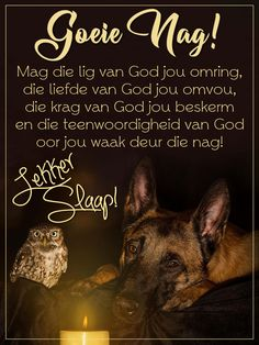Good Night Flowers, South Afrika, Goeie Nag, Angel Prayers, Christian Messages, Prayer Quotes, Sleep Tight, Afrikaans, Qoutes