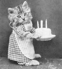 Felicitación cumpleaños gatuna vintage
