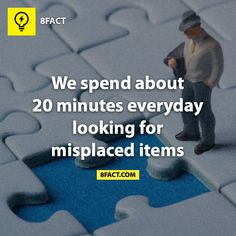 We spend about 20 minutes everyday looking for misplaced items. 8 Facts, Wtf Fun Facts, True Facts, Strange Facts, Random Facts, The More You Know, Did You Know, What The Fact, Meaningful Quotes