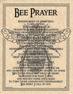 native american bee prayer | Bee Shaman Poster Prayer Animal Spirit Guide Art Celtic Wicca | eBay