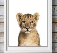 Bilder - Kleiner Löwe Druck A4 - ein Designerstück von Hakuna-Matata-Melly bei DaWanda