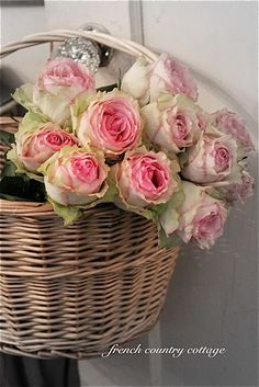 rosecottage.quenalbertini: A Little Basket of Roses