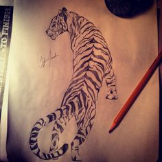 Tribal tiger tattoo design!