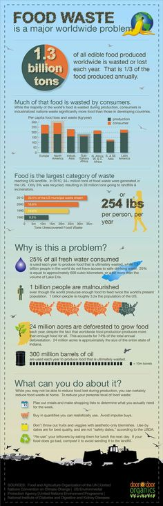Infographic, developed by Door to Door Organics, and reported by Forbes, explains why food waste is an issue and gives some tips to reduce food waste. Food waste is a big issue across the globe. World Hunger, Food Security, Think Food, Vacuum Sealer, Edible Food, Food Food, Carbon Footprint, Food Waste, Environmental Science