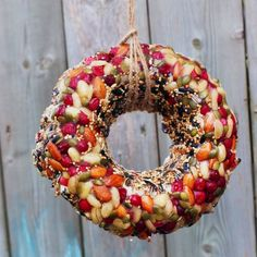 Vet-approved and gorgeous, this bird feeder wreath is an easy treat that will bring all the birds to your yard.