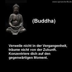 sayings to think buddha quotes german - Birthday quotes Meditation Quotes, Yoga Quotes, Motivational Quotes, Life Quotes, Inspirational Quotes, Meditation Space, Quotes Quotes, German Quotes, Buddha Quote