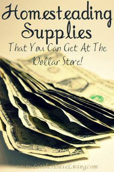 Homesteading Supplies You Can Get at the Dollar Store. believe it or not the…