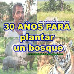 Modesto Lule Zavala : 30 años para plantar un bosque y salvar la fauna