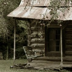 apple tree, porch, and swing