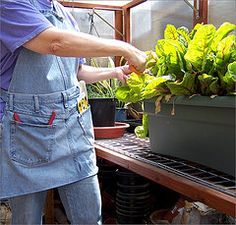 I need one of these gardening aprons!