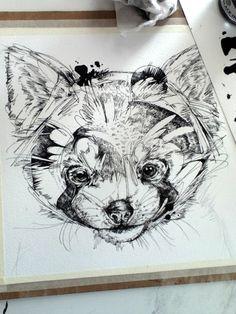 Red Panda in-progress sketch.