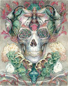 """Habitat"" by Ian Anderson"
